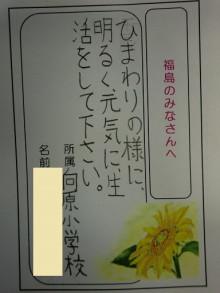 福島ひまわり里親プロジェクト ブログ