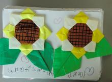 福島ひまわり里親プロジェクト ブログ-広島大附属幼稚園