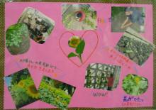 $福島ひまわり里親プロジェクト ブログ-普天間中学校