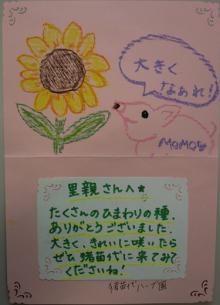 福島ひまわり里親プロジェクト ブログ-お手紙4
