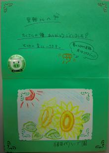 福島ひまわり里親プロジェクト ブログ-お手紙2